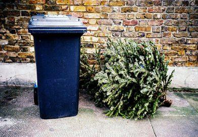 Kijelölt karácsonyfa gyüjtőpontok